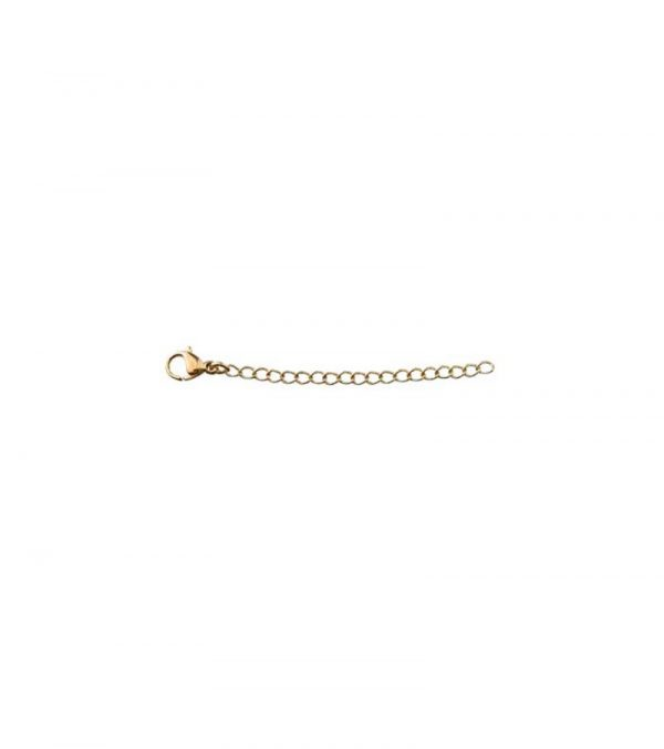 Extended Chain 5 cm Gold från Edblad