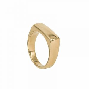 TIM Ring Guld från AROCK